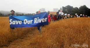 """Rally for the River"" - July 16, 2016; photo credit: Anne Mary Schaefer"