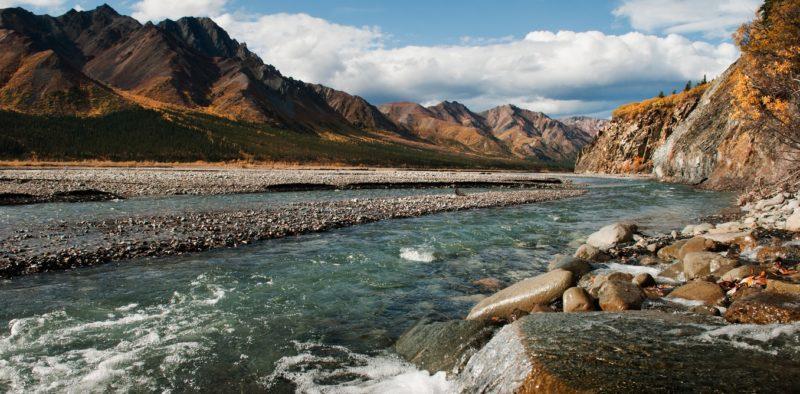 Toklat River, sandybrownjensen/flickr, CC BY-SA