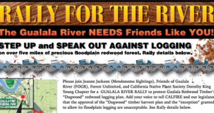 Rally for the River: Saturday, July 16, 2016 at 11am