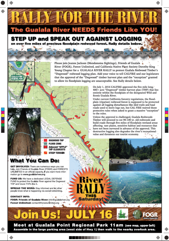 Rally for the River: Saturday, July 16 at 11am