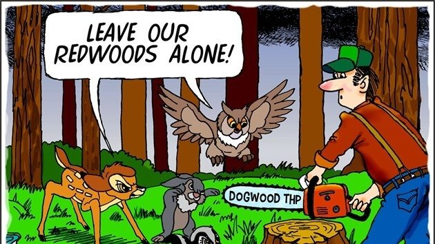 Leave our redwoods alone, by Drew Fagan