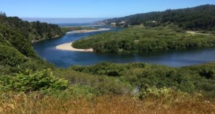 Gualala Point Regional Park - view of lagoon, by Bob Rutemoeller