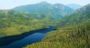 Photo: Aerial view of Tongass National Forest: Alan Wu / Flickr Creative Commons