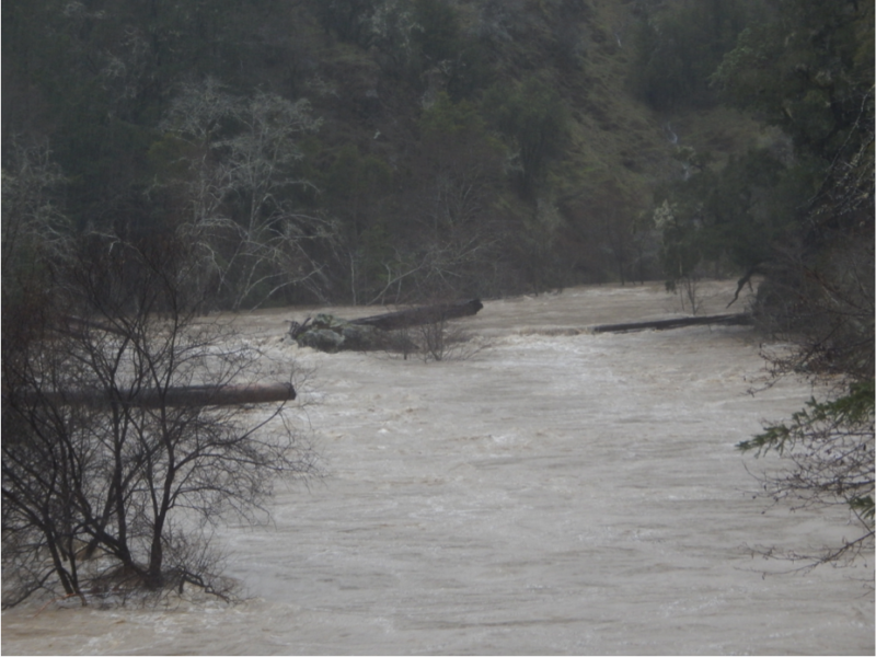 Feb 26, 2019: Wheatfield Fork Gualala River. Upstream of Annapolis Road Bridge at Clark's Crossing (Stewarts Point-Skaggs Springs Rd.).