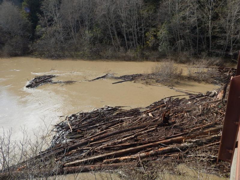 Log debris jam, South Fork bridge, looking West, Feb 2019