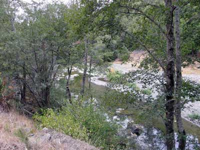 8/18/08 Wheatfield Fork Gualala River below the YMCA Camp Gualala