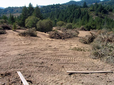 Cornell Vineyards on Mark West Creek - unpermitted grading, 2005