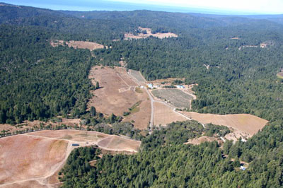 Vineyard conversion in Annapolis, Sonoma County