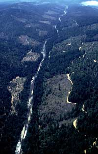 Gualala River, looking south, 1999