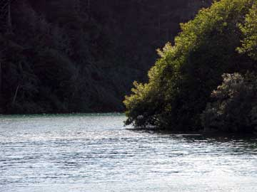 Wild & Scenic Gualala River, estuary